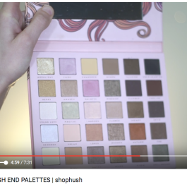 $10 DUPES FOR HIGH END PALETTES | shophush // Dani Marie